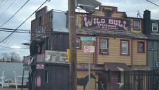 Wild-Bull-Bar-and-Saloon