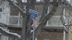barnes-street