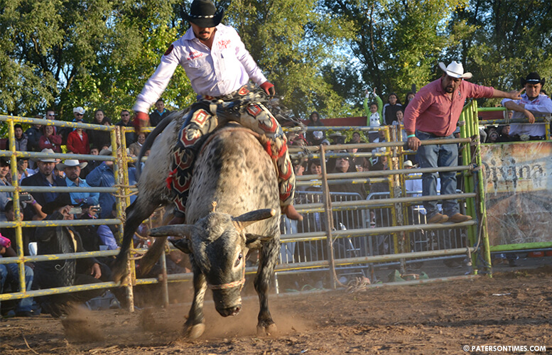mexican-rodeo-in-paterson