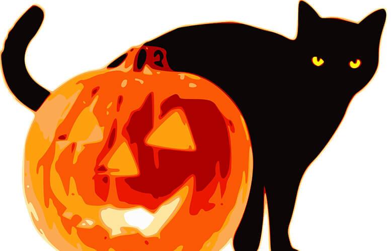 spookycat