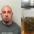 Ralph-Casale-marijuana