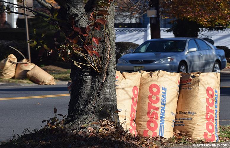 leaves-on-curbside