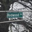redwood-avenue