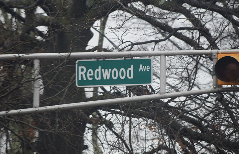 redwood-avenue