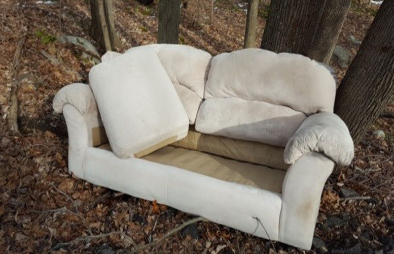 sofa-dumped-in-state-land