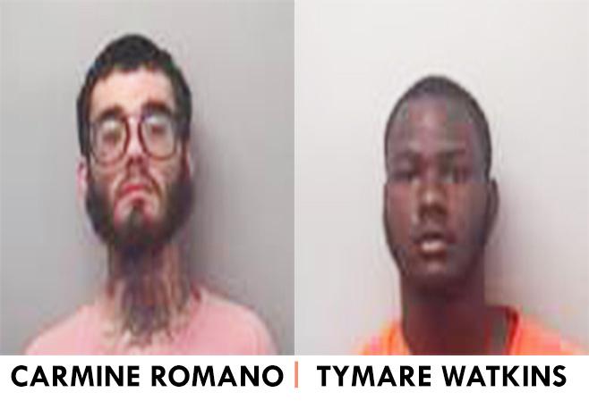 Romano-and-Watkins