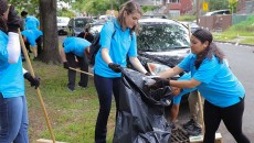 wrigley-park-clean-up