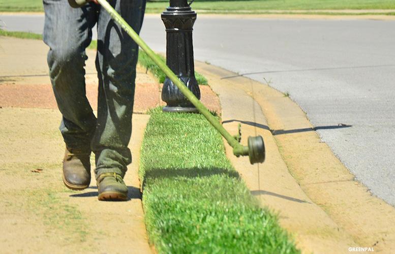 Greenpal-lawn-mowing-app