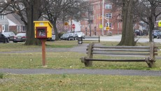 Amistad-Park